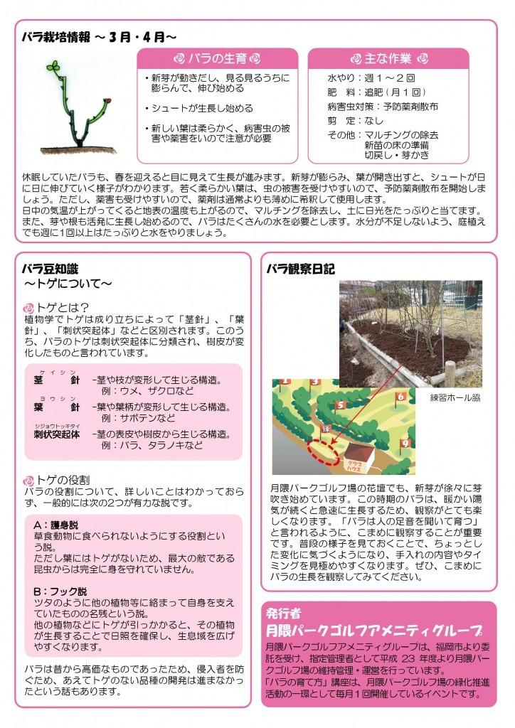 バラの栽培について